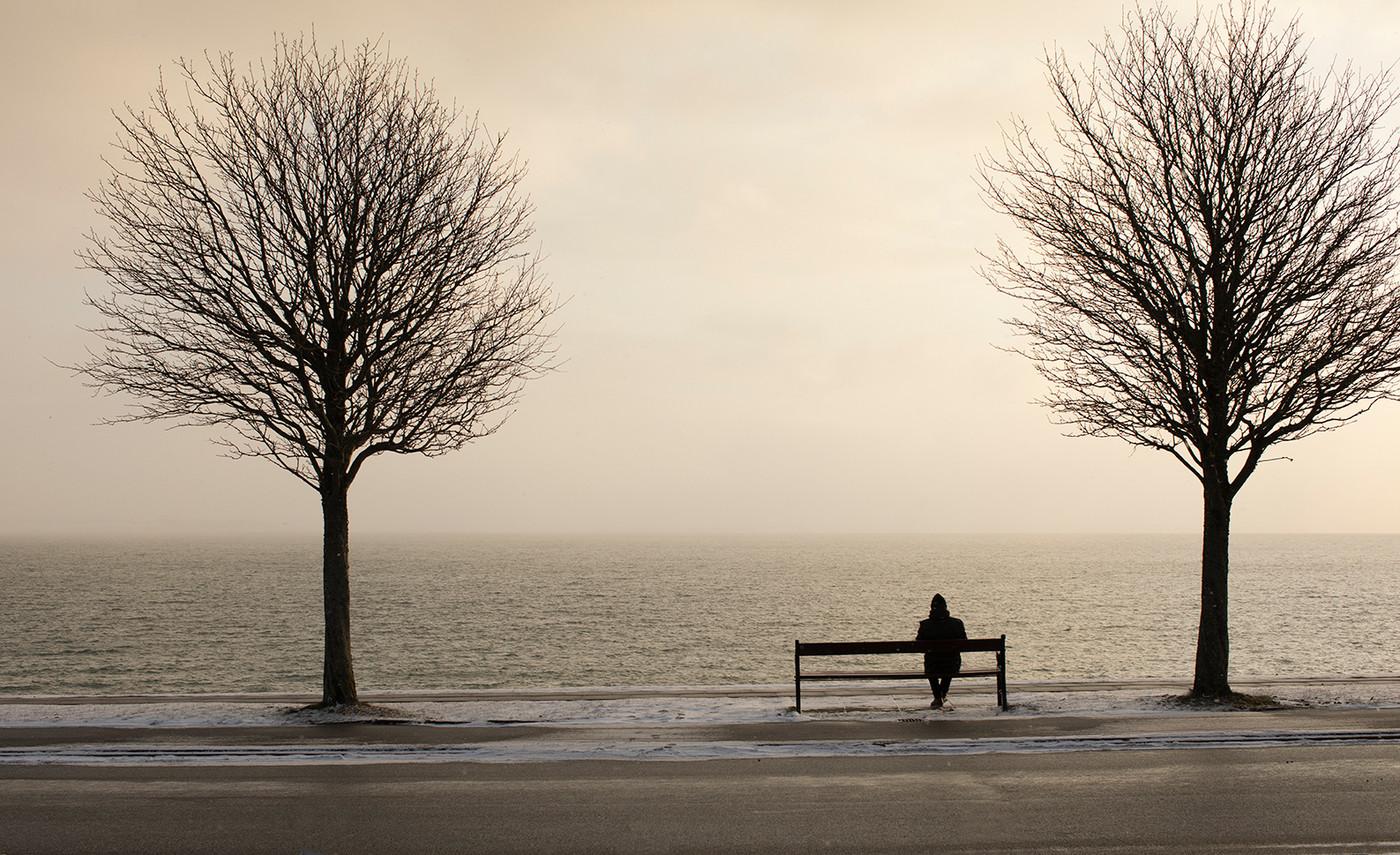 Sjælesorg - mand mellem træer ved hav