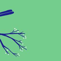 Fugl på gren - 'Mærk livets under'