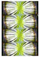 Samtalekort Folkekirkens liturgiarbejde