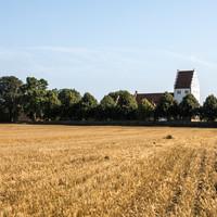 Høst 09.jpg
