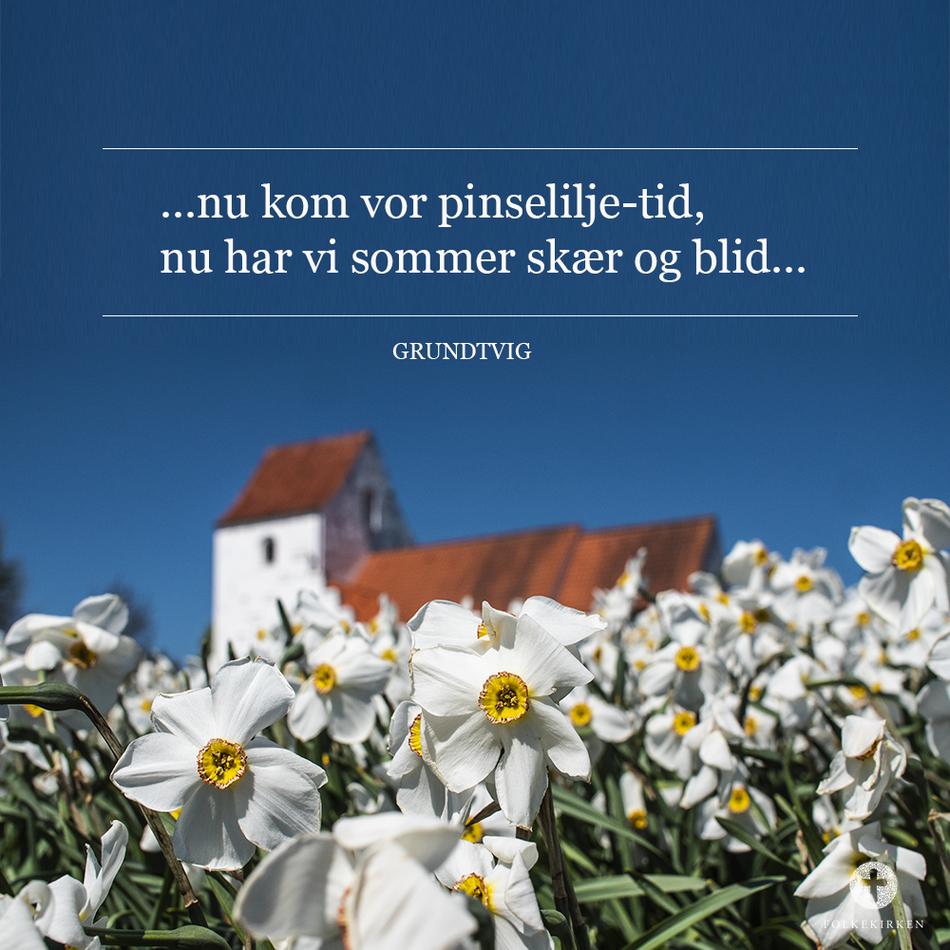 Salme 290