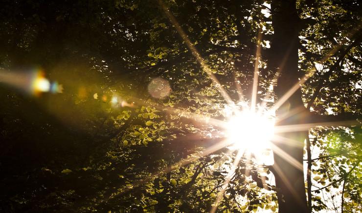 Find morgen- og aftenbønner fra Salmebogens bønnebog