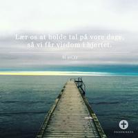 Salmernes Bog 90,12