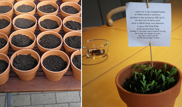 To billeder i et billede. På det ene billeder står en snes urtepotter med jord i. På billede to står en enkelt urtepotter med små grønne spirer samt en pind med en seddel, hvorpå der er skrevet en påskehilsen.