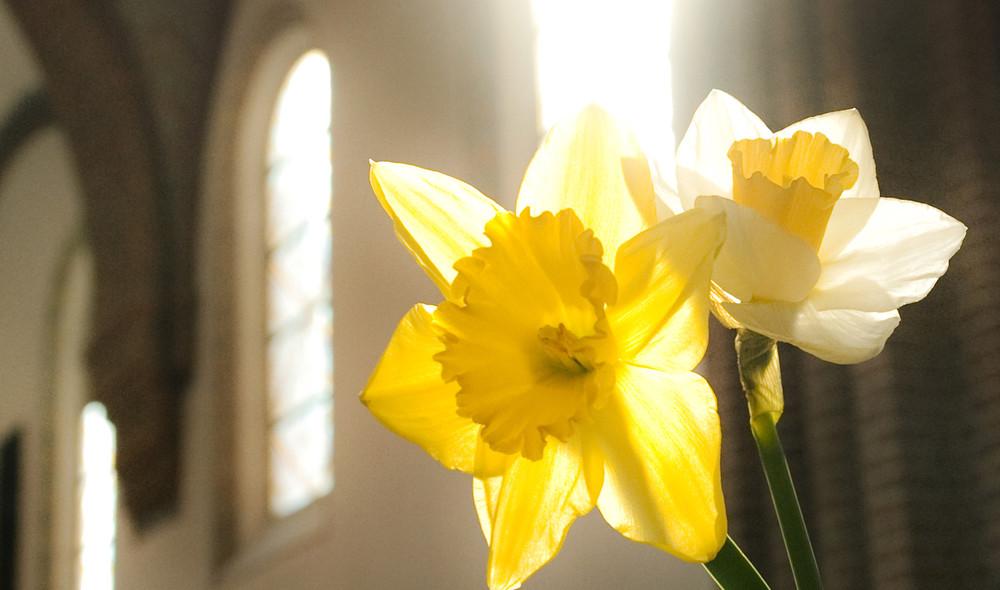 Påsken er den største kristne højtid til minde om Jesu død og opstandelse. Hør påskesalmer og læs om påsketraditionerne.